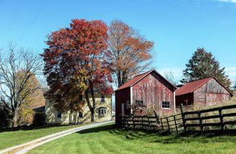 Fall Farm West Virginia